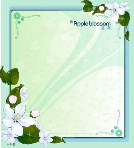 Apple blossom flower frame vector