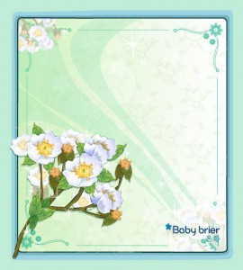 Baby bride flower vector frame
