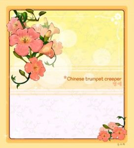 Chinese trumpet creeper flower frame vector