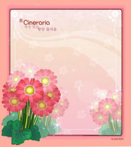 Cineraria flower frame vector