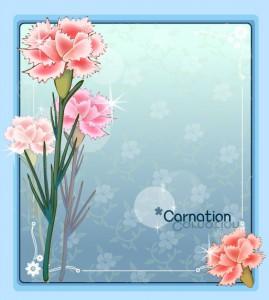 Cornation flower frame vector