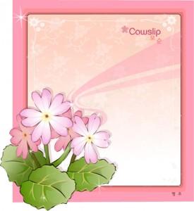 Cowslip flower frame vector