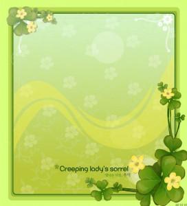 Creeping lady's sorrel floral frame vector