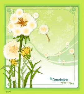 Dandelion flower frame vector