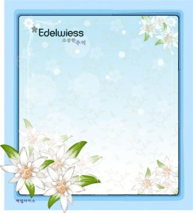 Edelwiess flower frame vector
