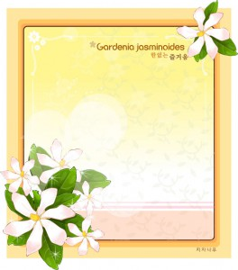 Fragrant jasmine flower frame vector