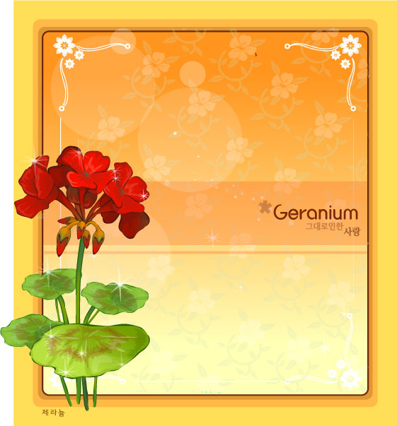 geranium flower frame vector