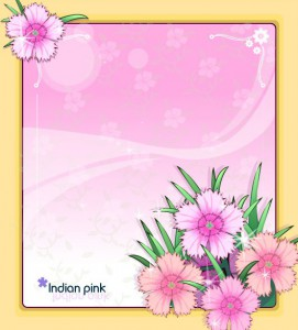 Indian pink flower frame vector