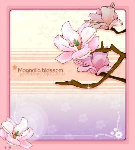 Magnolia flower blossom frame vector