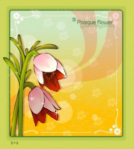 Pasque flower frame vector