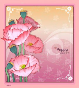 Poppy flower frame vector