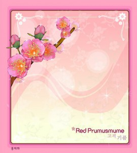 Red Prunus mume flower frame vector