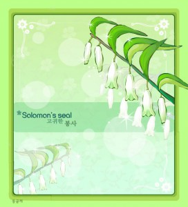 Solomon's seal floral frame vector