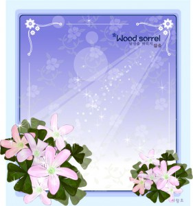 Wood sorrel flower frame vector