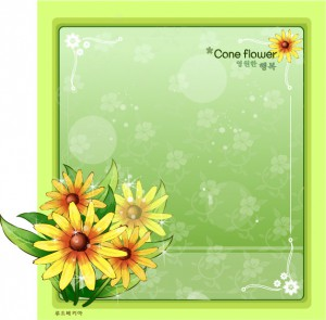 Cone flower frame vector