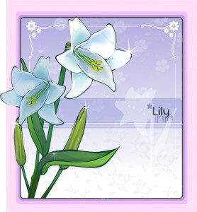 Lily flower frame vector