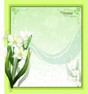 Orchid flower frame vector