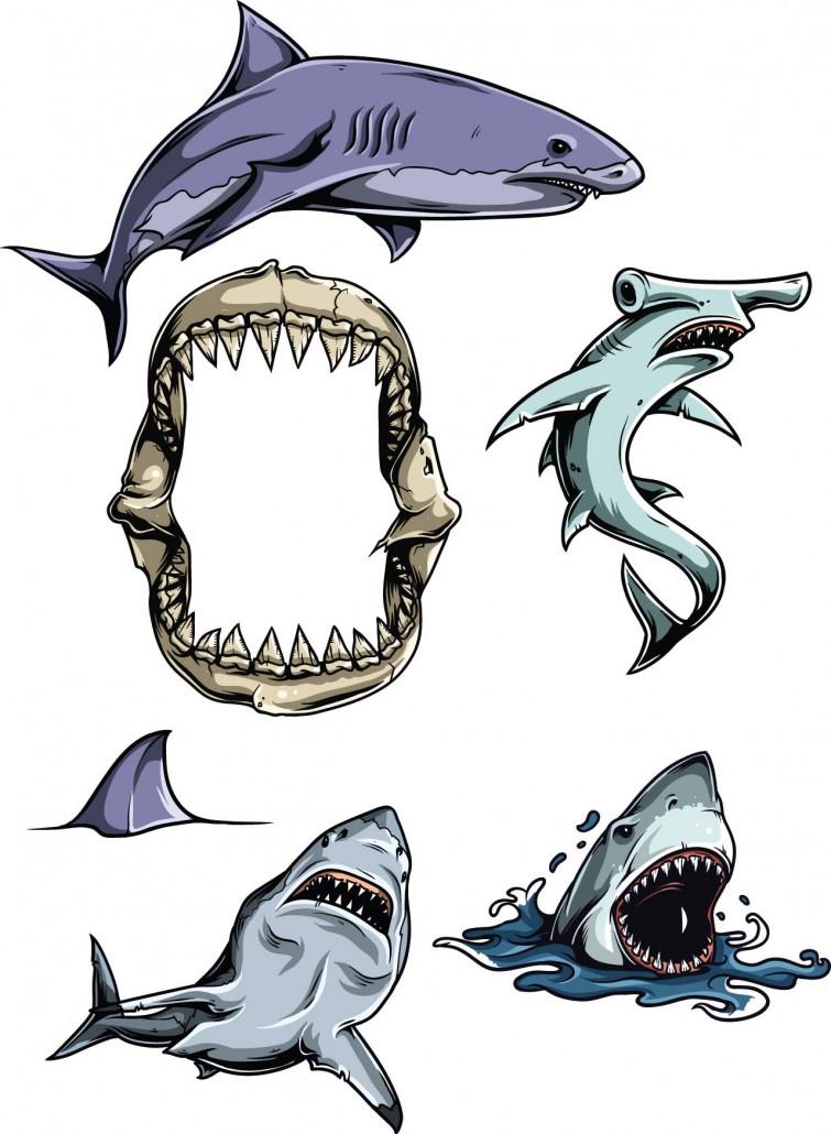 Sharks Vector Clipart Set Free Download