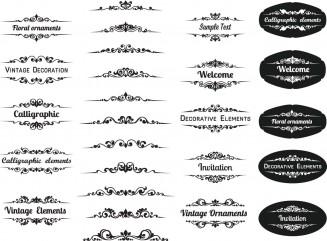 Decorative calligraphic elements set vector