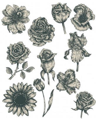 Vintage flowers monochrome set vector