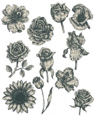 Vintage flowers monochrome set vector