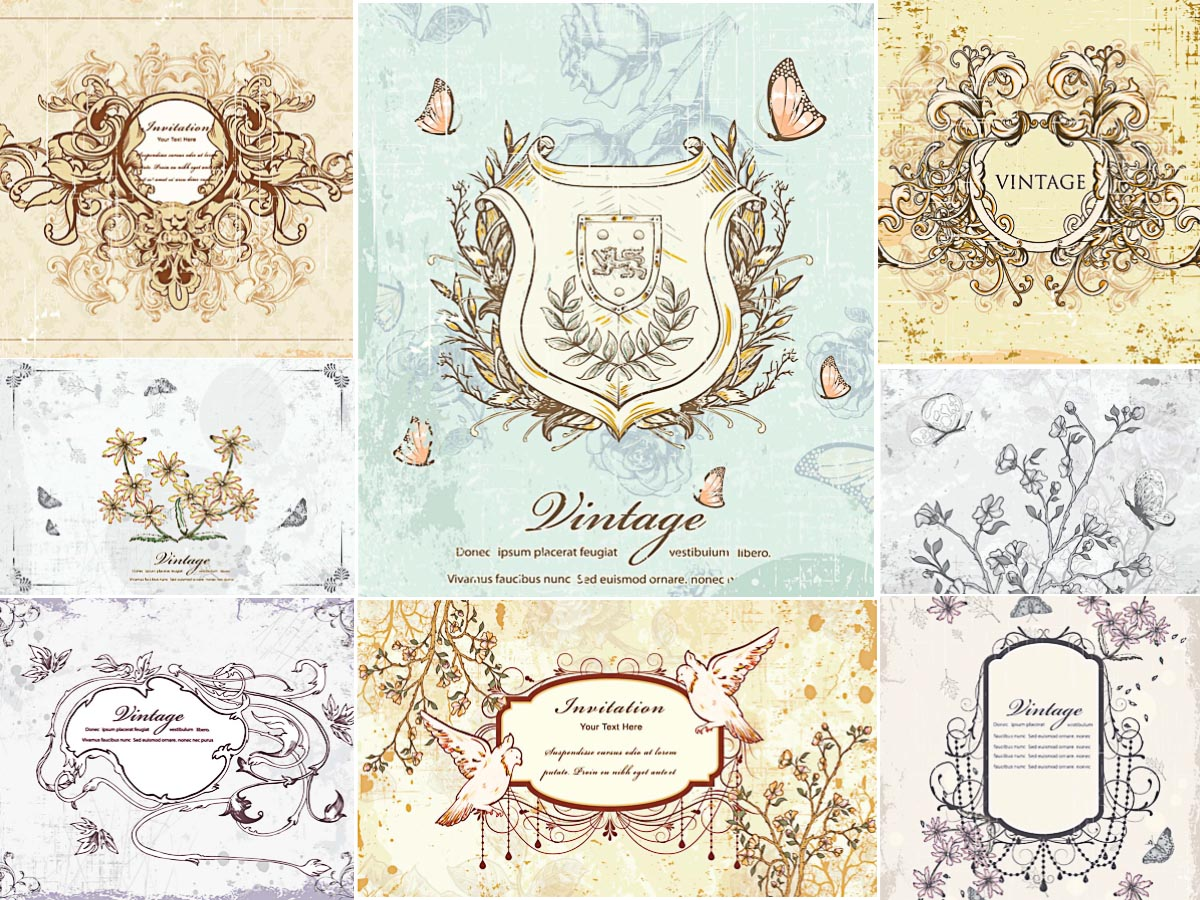 Ornate shields and frames set vector