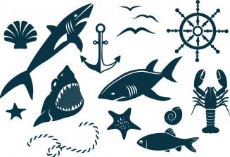 Set of decorative marine elements free vectors