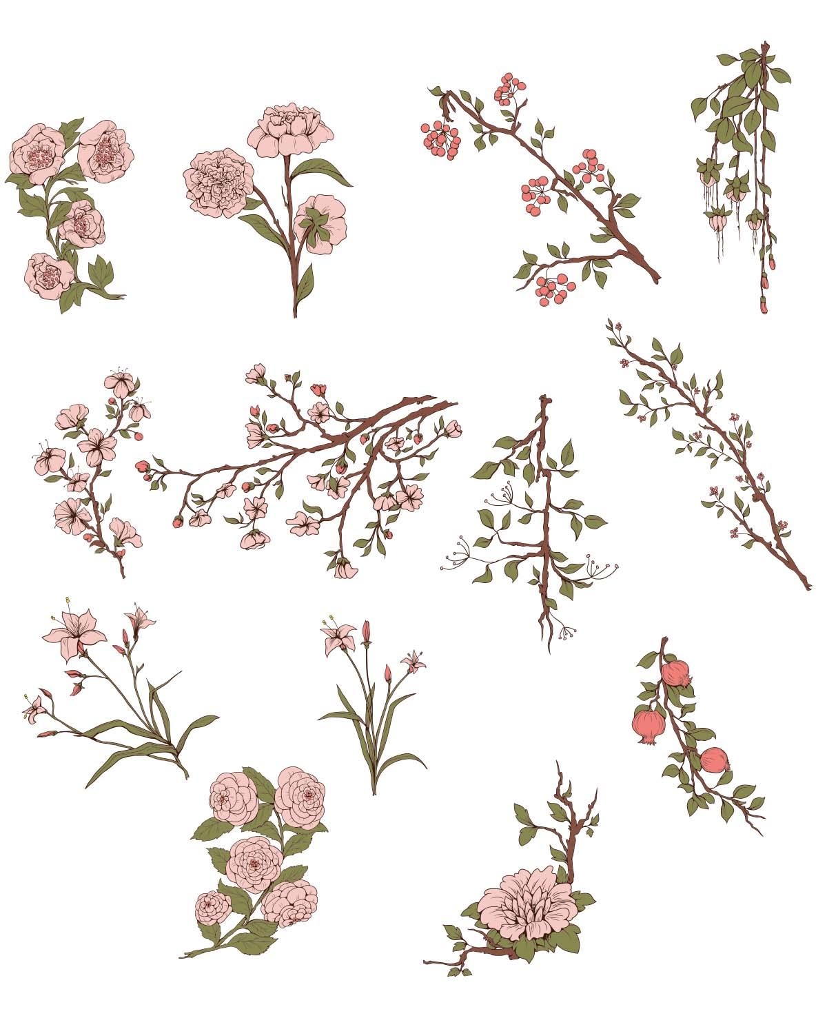 Japanese flowers sakura tree set vector