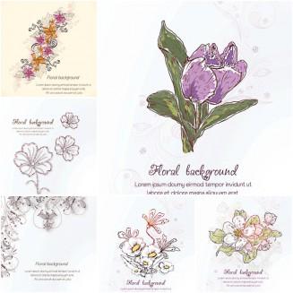 Floral pattern spring white set vector