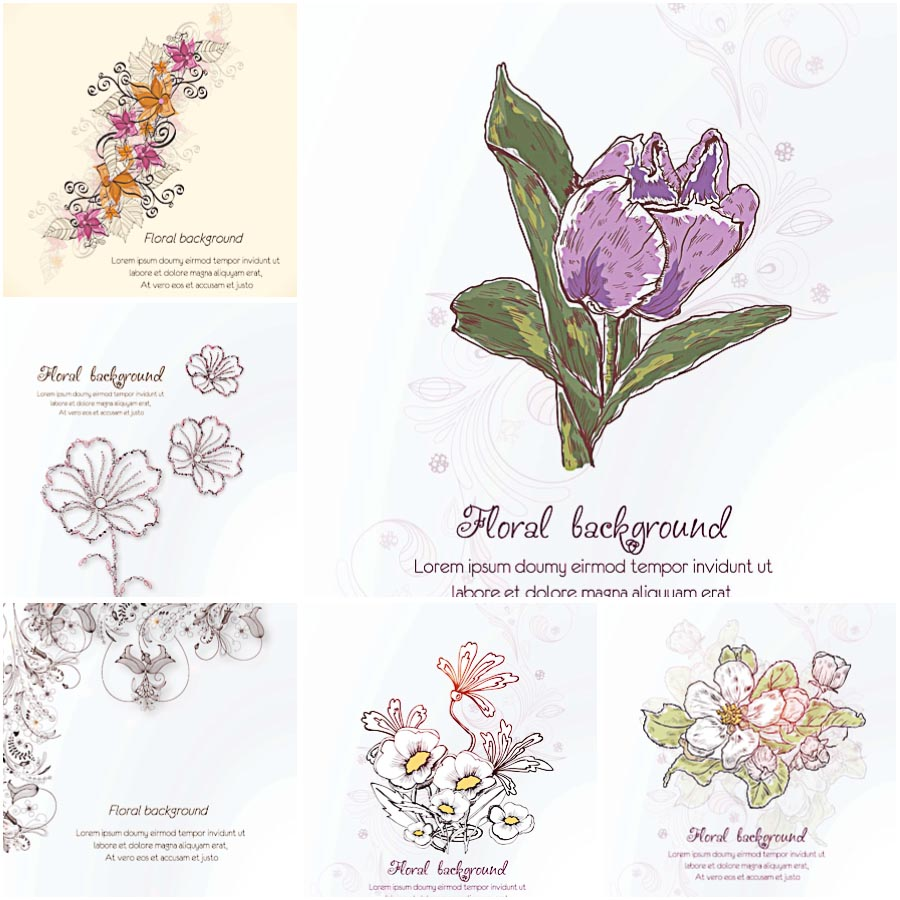 Floral pattern spring white set vector