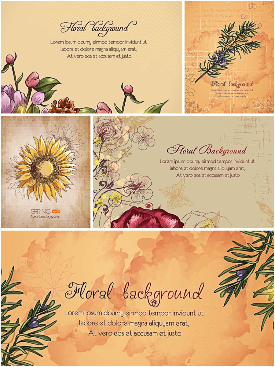 Floral spring sunflower vintage pattern set vector