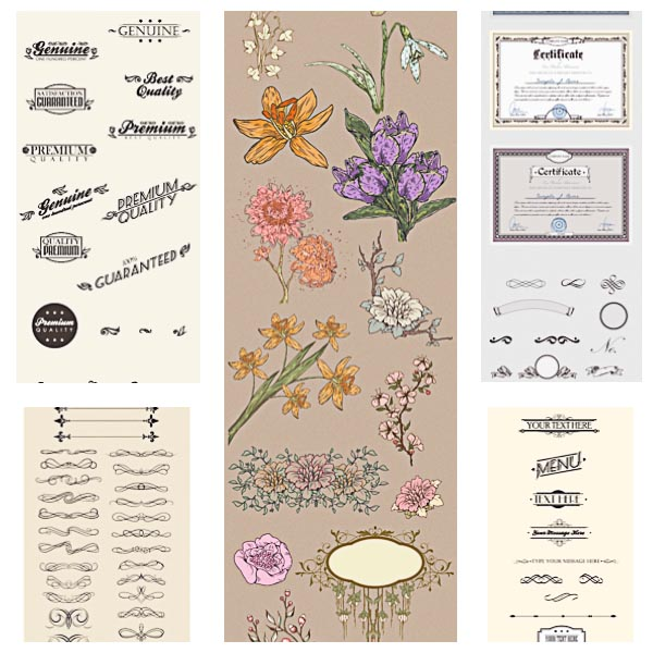 Calligraphic decorative elements flowers menu set vector