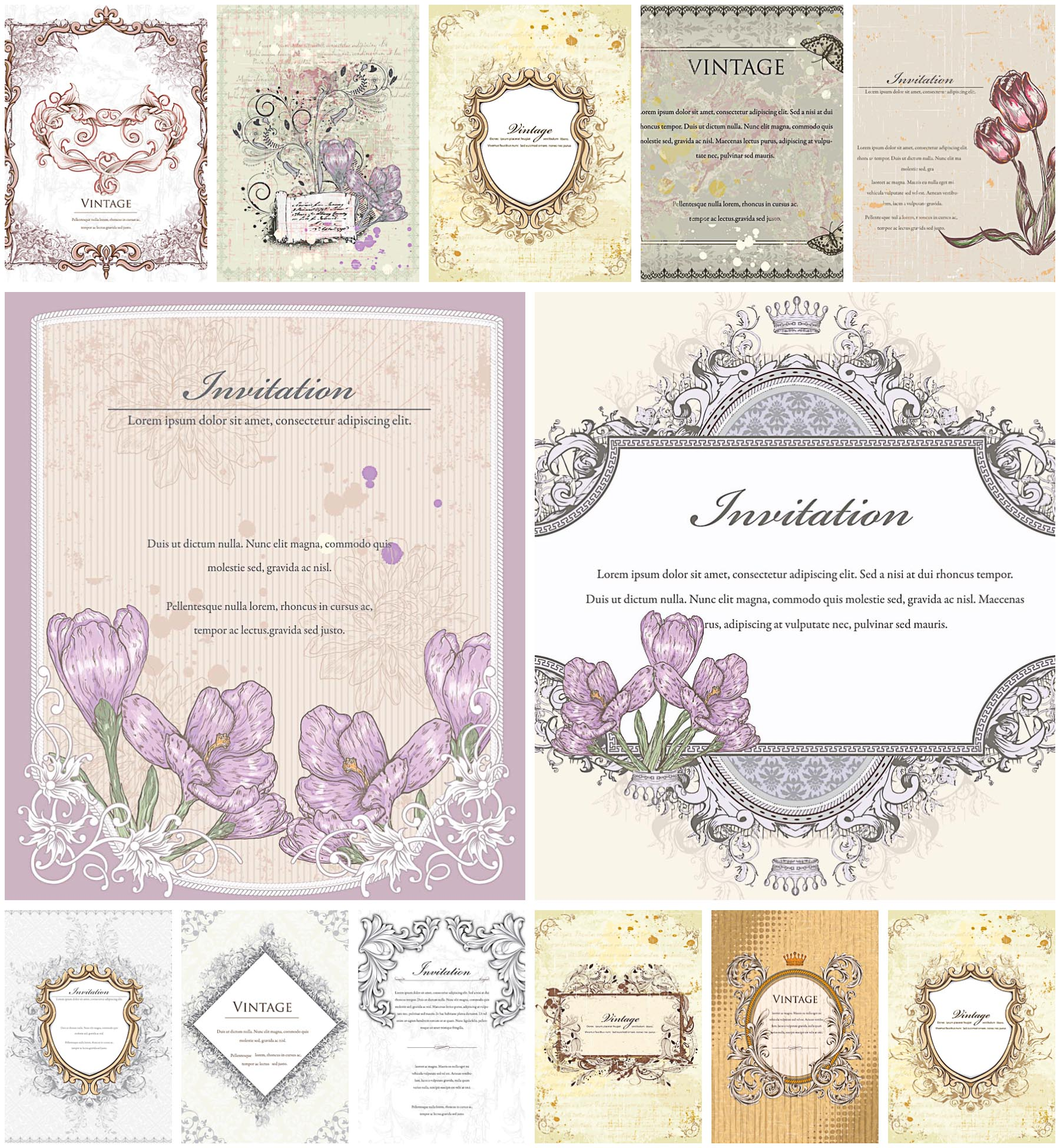 Old frames with crocus ornate set vector