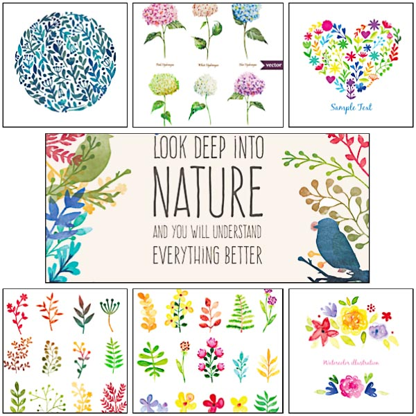 Hand painted watercolor herbs and nature elements set vector