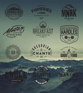 Retro logo hipster design badge vector