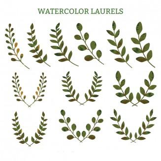 Laurel wreaths watercolor clipart vector
