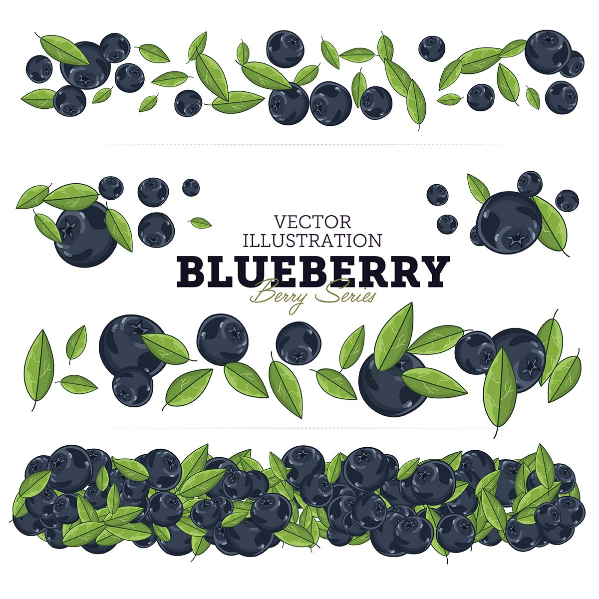 Juicy blueberries vector illustration
