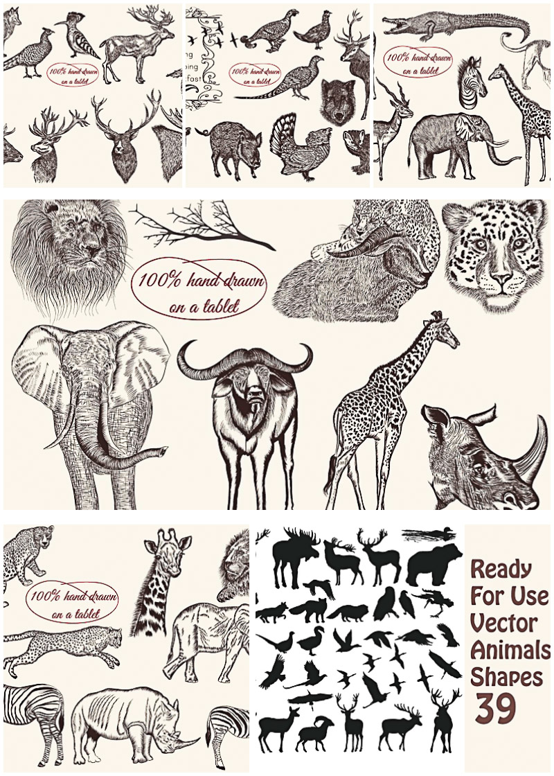 Wild animals hand drawn engraving vector pack