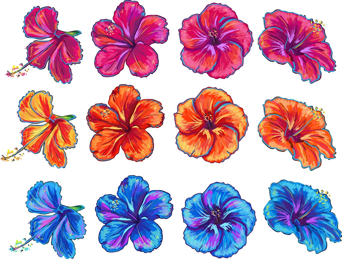 Floral elemets with hibiscus vector set