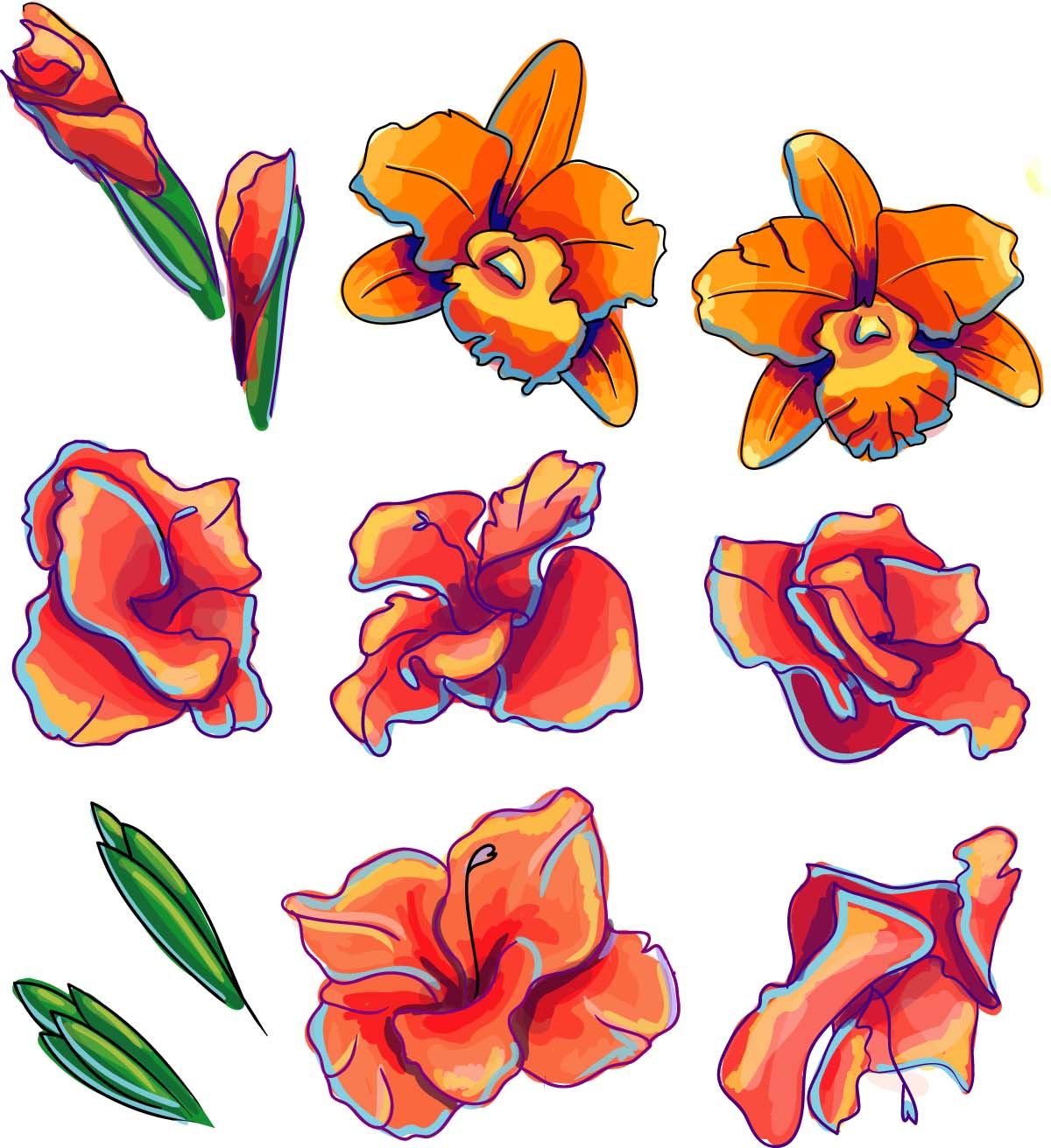 Decorative element orchid flower set vector