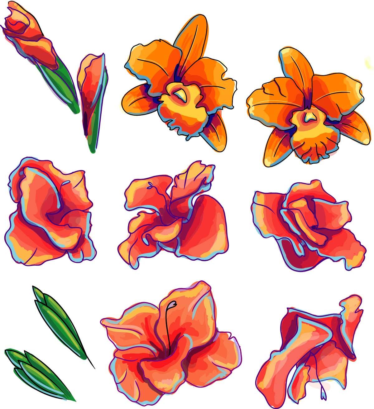 Decorative element orchid flower set vector