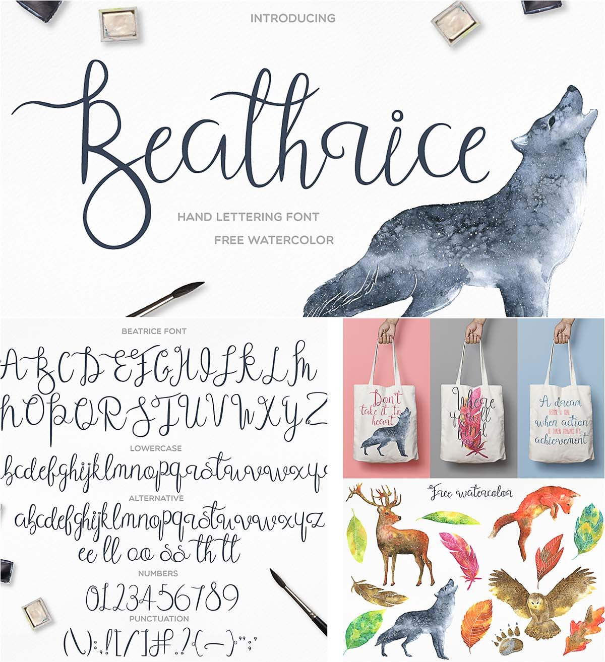 Beathrice font and watercolor elements