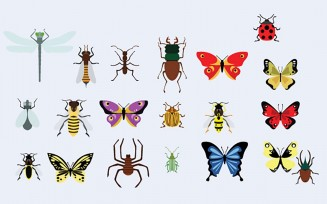 Butterflies and bugs vector collection