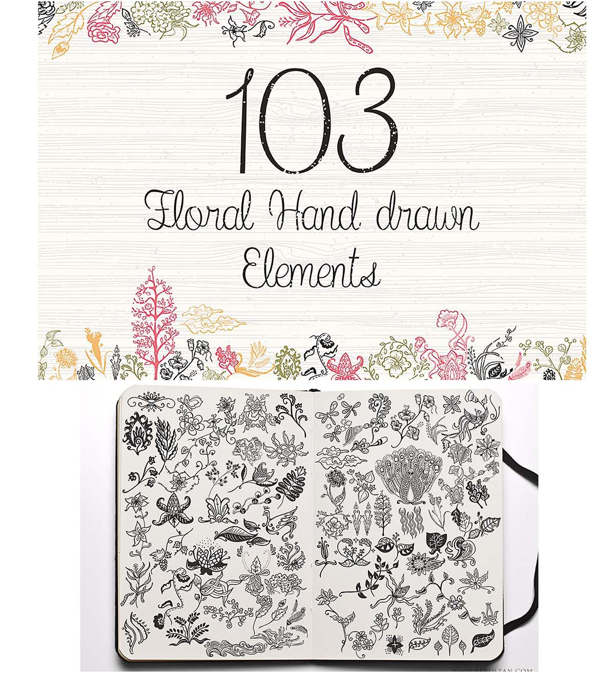 Floral hand drawnl elements and swirls