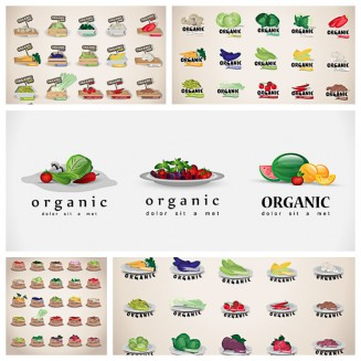 Eco fruits and vegetables vector collection