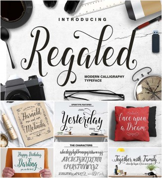 Regaled modern calligraphy typeface