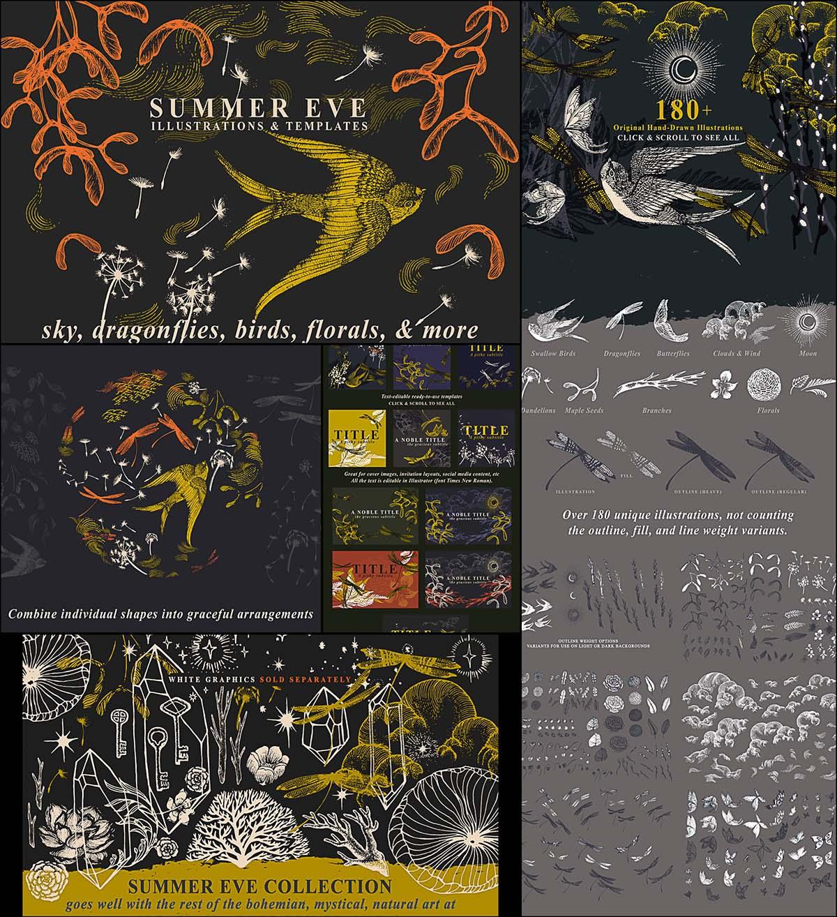 Vintage floral summer vector illustrations