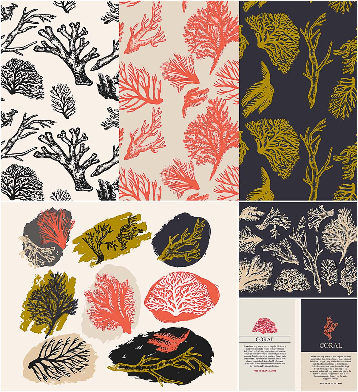 Coral and seaweed illustration vector set