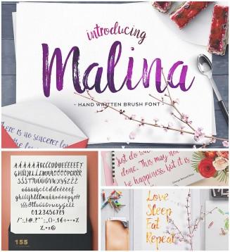 Malina hand written brush font