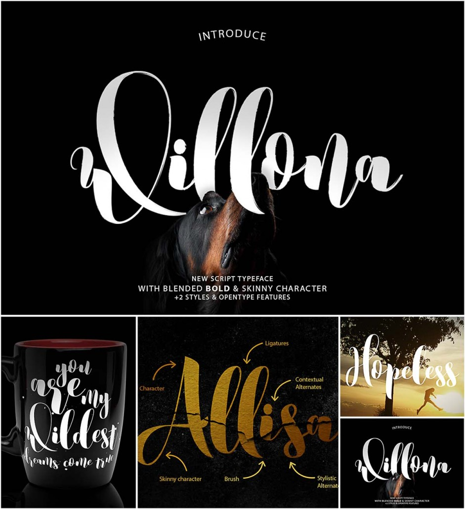 Willona Calligraphy Font Free Download